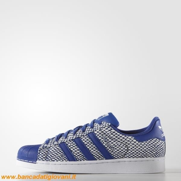 Superstar Blu Adidas