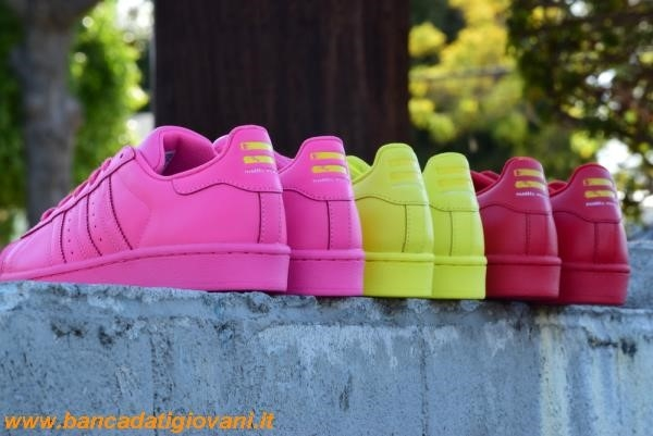 Superstar Adidas Pharrell